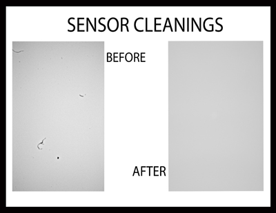 sensor-cleanings2-edited-1.jpg